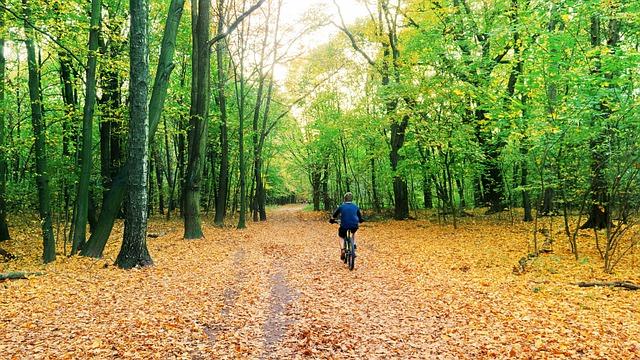 Późna jesień – najlepszy czas na hartowanie organizmu